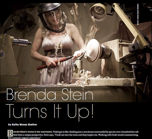 Nashville Arts Magazine - Brenda Stein Turns It Up!