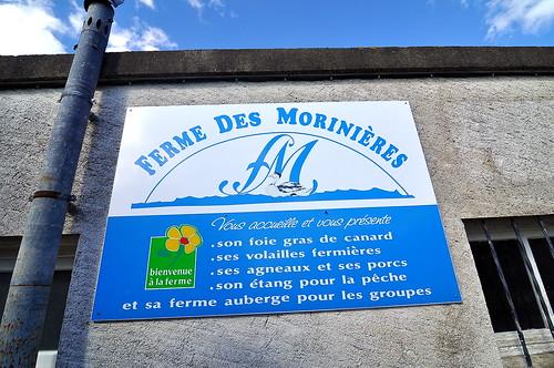 Ferme des Morinières - Loire Valley