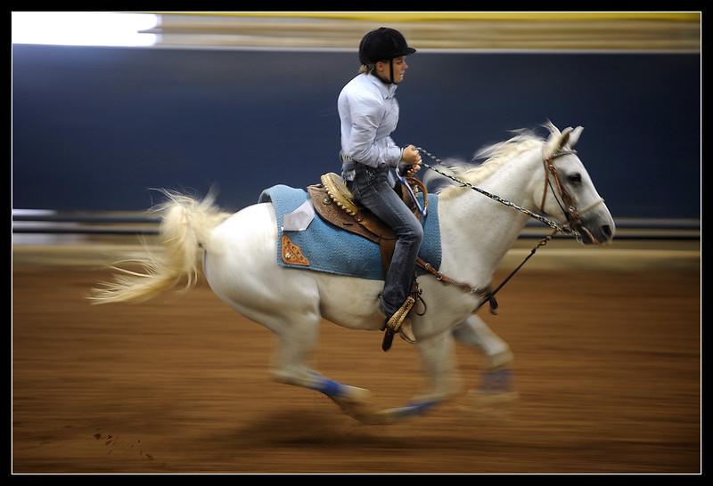 0728_ABFE_4H_HorseShow10025