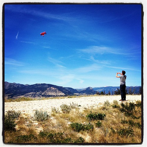 Kite-flying Boy