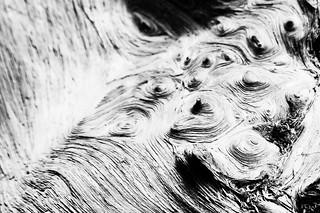 Stirred Wood (B&W)