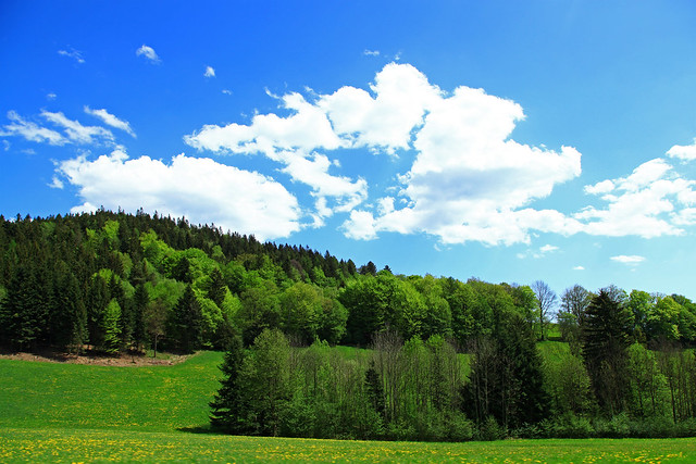 The landscape of Lower Austria.