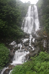 Waterfall during rainy season. Photo © Uday M Shirodkar.