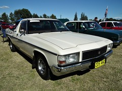 1983 Holden WB utility