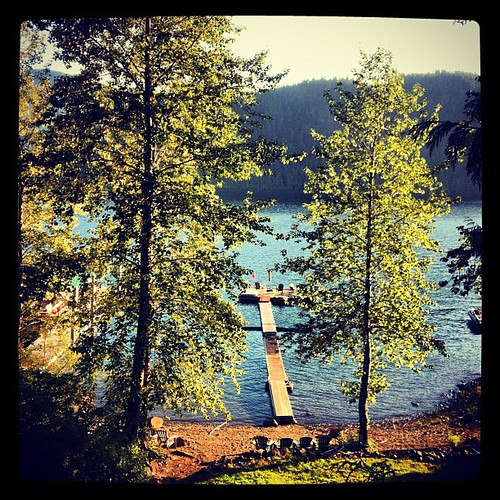 summer lake tree square dock bc squareformat portalberni iphone alberni sproat ptalberni iphoneography instagram instagramapp xproii uploaded:by=instagram foursquare:venue=4ccdee02ba79a1cd2c4044cb