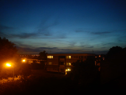 Blue hour from my back window