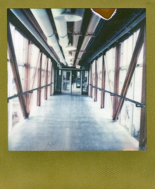 'Roid Week 2012 - Day Three