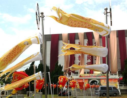 黃魚是馬祖昔日的大宗漁獲,然而因大量捕撈,今日已難見野生族群,取而代之者為中國大陸的養殖黃魚。圖為代表馬祖特產的黃魚旗。圖片來源:http://www.matsu-travel.com.tw/news_content.php?id=44