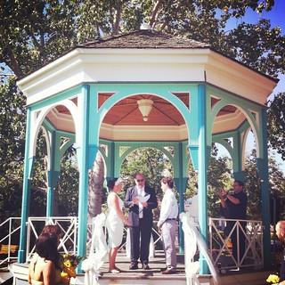 Jacquie wedding The Fringe 052