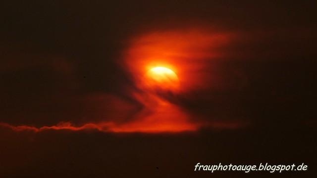 Sonneuntergang im Sahara Staub