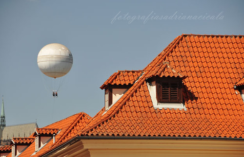 the roofs  and the balloon