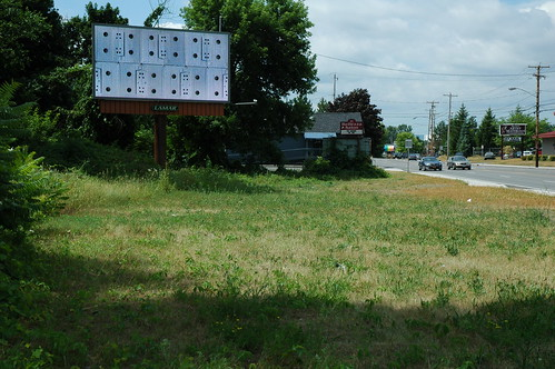 Albany Billboard Art Project 2012 - Julia Cocuzza (3)