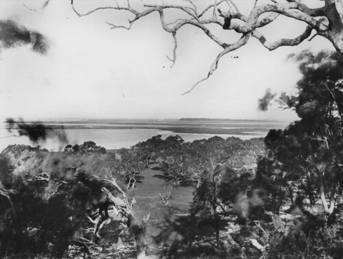 Panoramic view of Moreton Bay, ca. 1886
