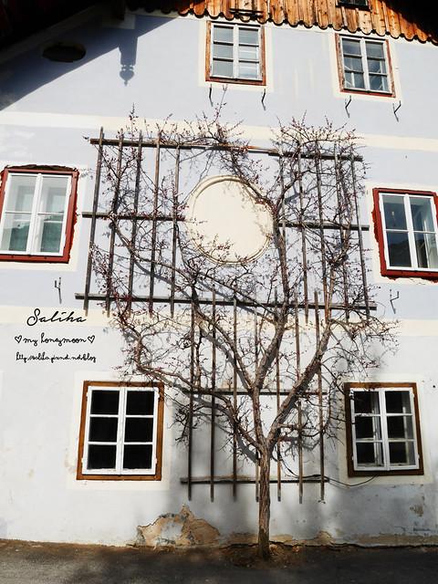 奧地利哈爾施塔特Hallstatt, Austria (6)
