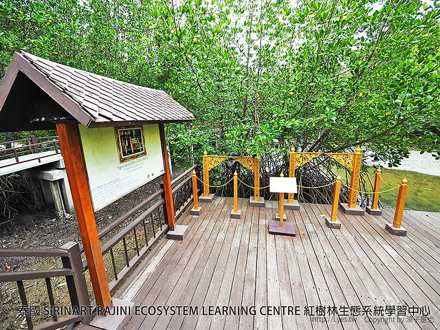 泰國 SIRINART RAJINI ECOSYSTEM LEARNING CENTRE 紅樹林生態系統學習中心 29