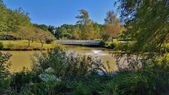 Quiet Waters Pond