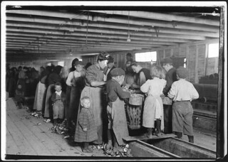 Group of oyster shuckers working in a canning factory. All but the very smallest babies work, March 1911
