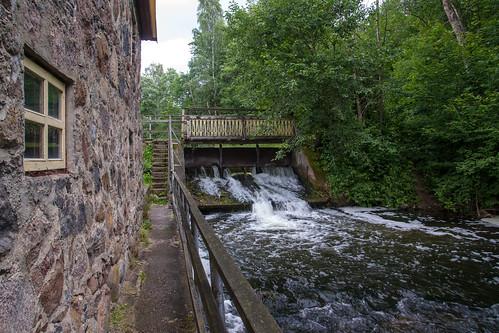summer nature sony mills lithuania vasara lietuva gamta muzeums mariukasm malūnai sal16105 muziejai vietovės gražutėbicycletrail gražutėregionalpark gražutėsdviračiųtrasa gražutėsregioninisparkas tiltiškės