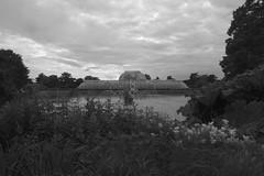 A evening walk around Kew Gardens