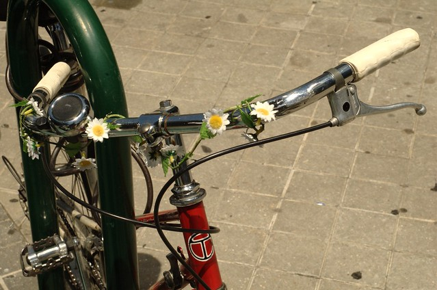 202/366: Blossom bicycle