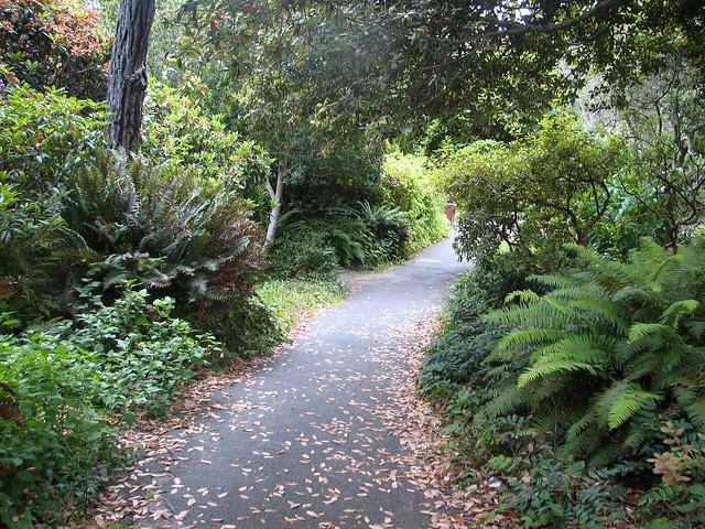 Mendocino coast botanical gardens flickr photo sharing - Mendocino coast botanical gardens ...
