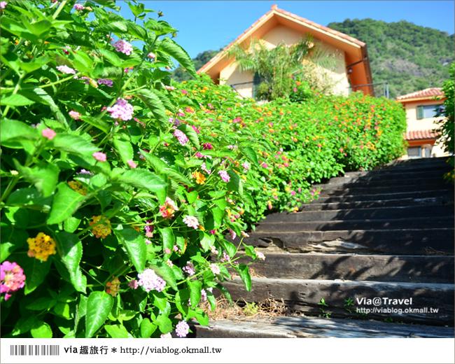 【台東民宿】台東願井民宿~在藍天下遇到南法風的浪漫莊園7