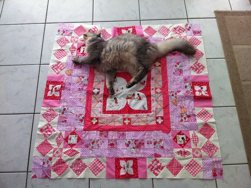 what is it with cats and quilt photos?