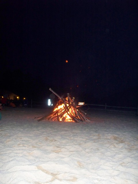 Bonfire On The Beach - State Parks Blogs