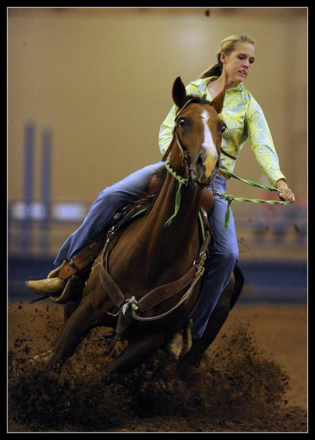 0728_ABFE_4H_HorseShow0345