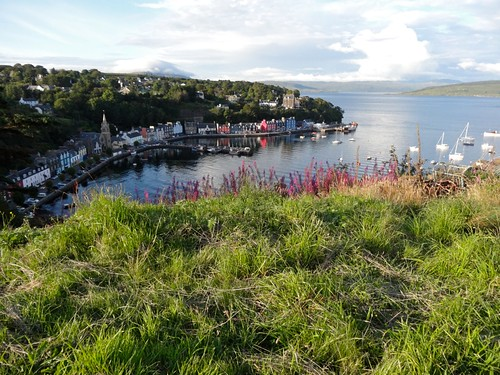 Tobermory from the hill above