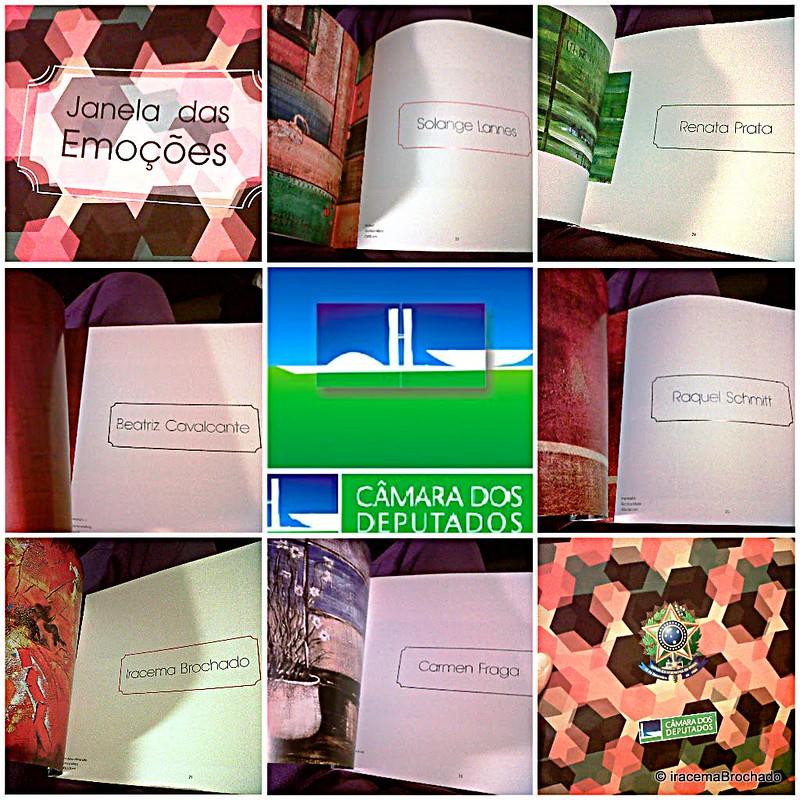 """COLETIVA DE PINTURAS """"JANELA DAS EMOÇÕES"""" CÂMARA - AGO/2012"""