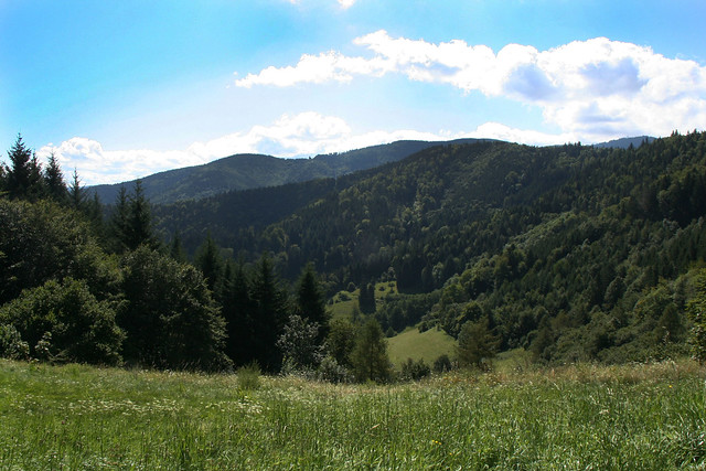 Hiking the Black Forest
