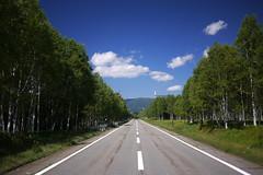 Route 273 heading up Mikuni Pass (Hokkaido, Japan)