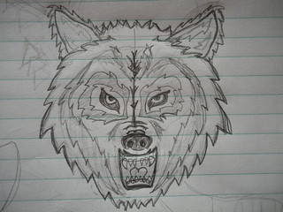 Rough sketch of the Wolf