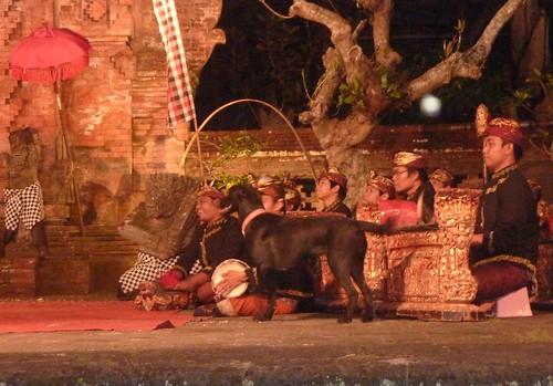 Bali- Ubud-Spectacle de danse (4)