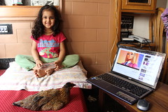 our pet hen loves the internet .. by firoze shakir photographerno1