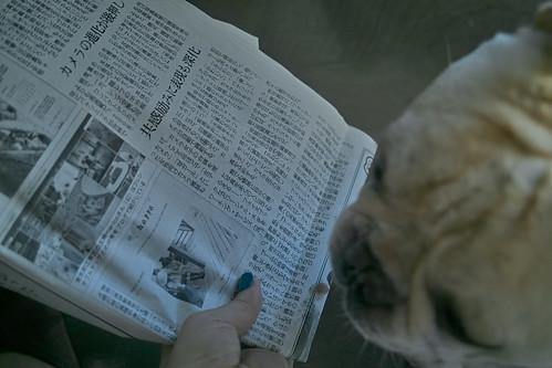 ASAHI Newspaper & BLiNc!