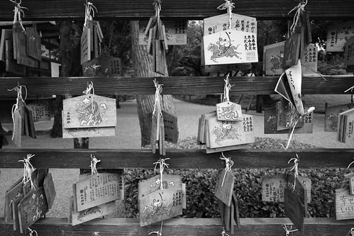 2012夏日大作戰 - 熊本 - 出水神社 (4)