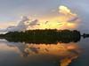 Evening clouds after rain
