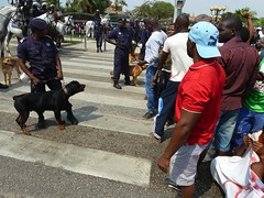 Several dozen protestors who were arrested for taking part in a demonstration in the capital Luanda in November 2011. Credit: Louise Redvers/IPS