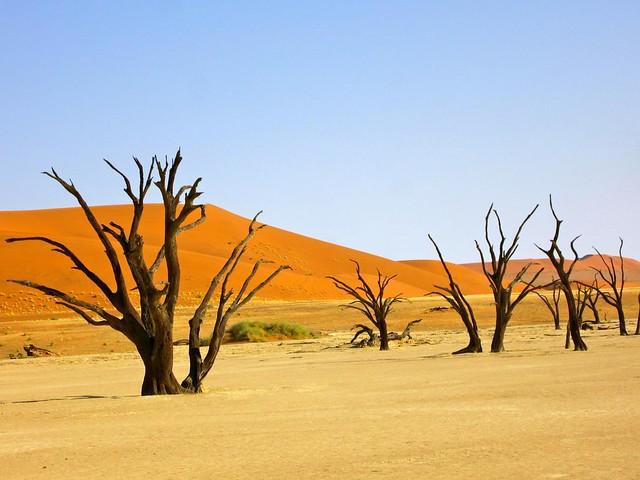 swakpomund, namibia