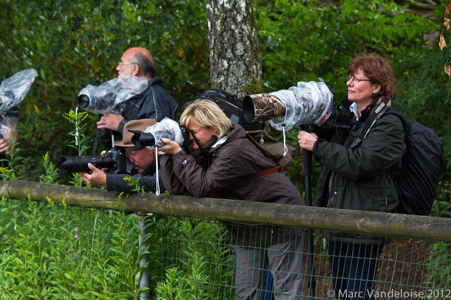 Sortie au Zoo d'Olmen (à côté de Hasselt) le samedi 14 juillet : Les photos d'ambiance 7573047338_de4ba03ef0_o