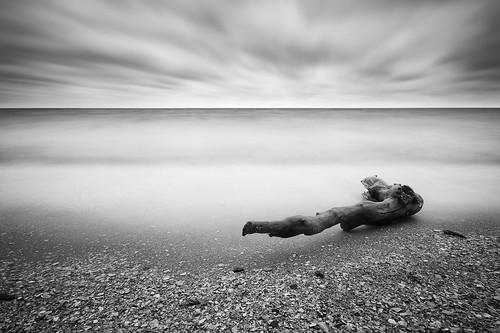 longexposure blackandwhite shells beach water monochrome bay log sand waves alone maryland chesapeake chesapeakebay