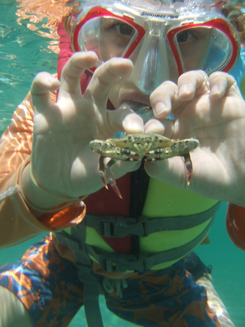 Shane with a swimming crab!