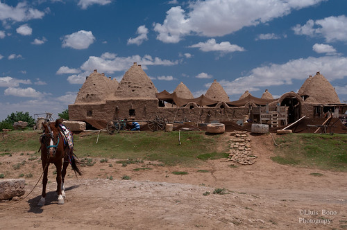 Casa colmena turística