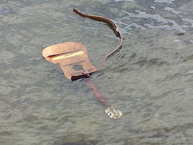 drowned guitar