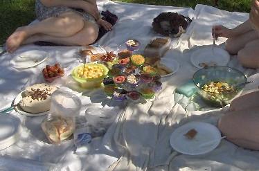 piknikki3