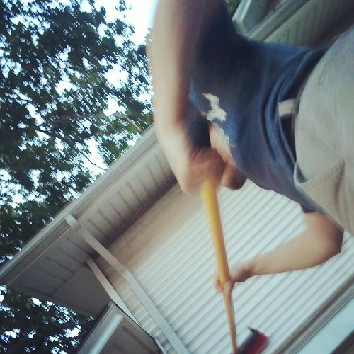 Cleaning the Siding