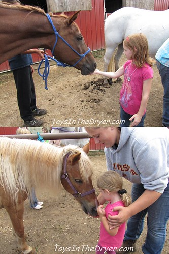 horse riding 6