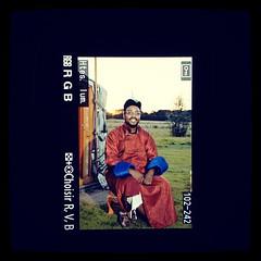 #yourte #mongole #nomade #lodge #nikon #d300s #reflex #pics #pornpics #foodporn - Photo of La Chapelle-Rablais